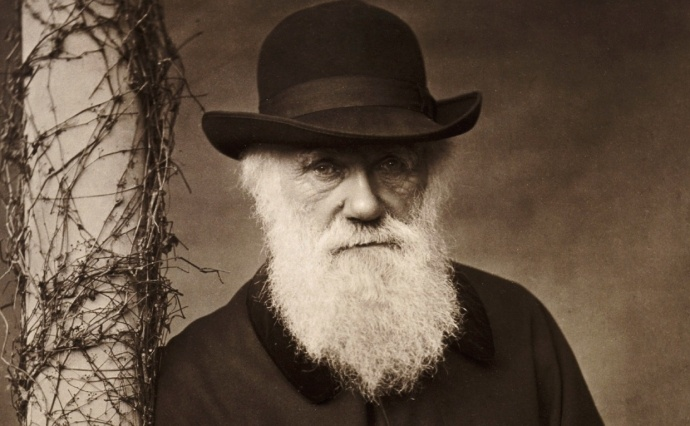 Darwin siti di incontri